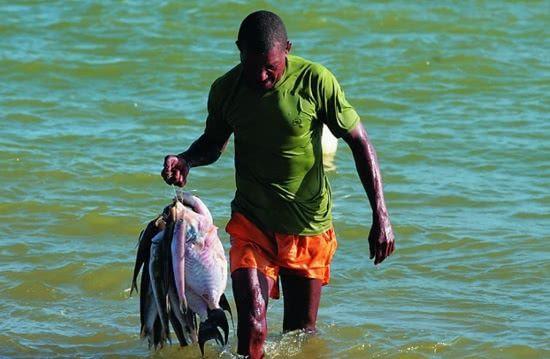 seguro-desemprego-pescador-artesanal